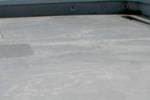 コケの発生、表面トップコート変色、防水層の劣化